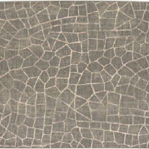 Fragment Elephant Skin