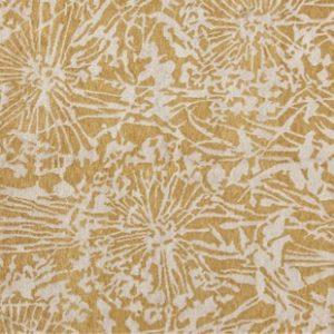 Earth Dandelion Gold Apricot